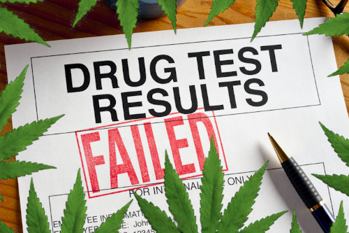 Will I fail drug test for weed THC?