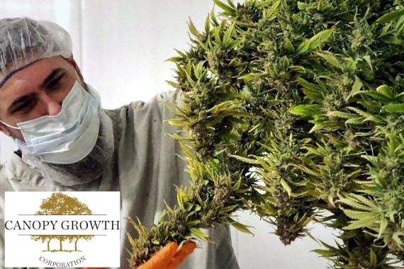 canopy growth cannabis company stock