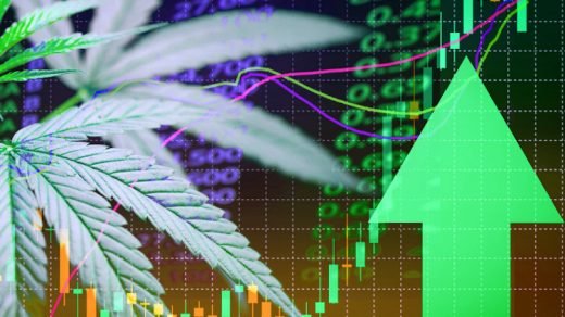 the future is green cannabis stocks